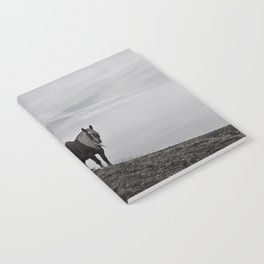 A Pony in the Pyrenees Notebook