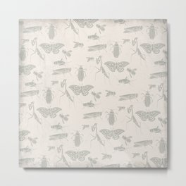 Insectology:  Insect Scatter on White Botanical Stencil Print Metal Print