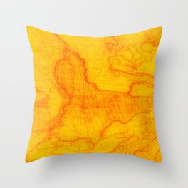 Nature map Throw Pillow