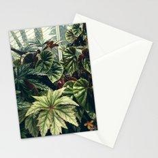 Beautiful Begonias Stationery Cards
