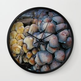New and Old Mushroom Growth Wall Clock