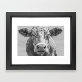 Animal Photography | Cow Portrait Black and White | Farm Animals Framed Art Print