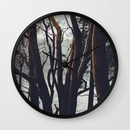 Pacific Madrone Wall Clock
