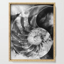 Black And White Nautilus Shell By Sharon Cummings Serving Tray