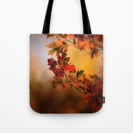 Times They Are Changing Tote Bag