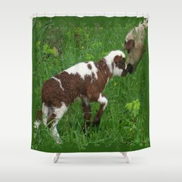 Cute Brown and White Lamb with Ewe  Shower Curtain