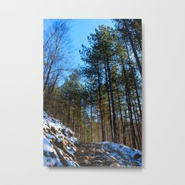 Forest road covered with white snow Metal Print