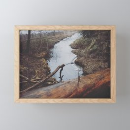 Fallen Log Framed Mini Art Print
