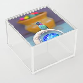 The Pose Acrylic Box