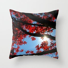 Japanese maple in scarlet against blue fall sky Throw Pillow