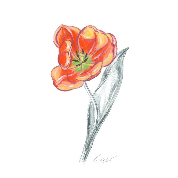 Tulip 02 Botanical Flower Duvet Cover