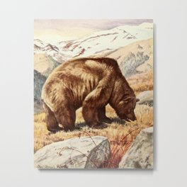 Fuertes,Louis Agassiz1874-1927)-Burgess Animal Book forChildren 1920 (Brown Bear) Metal Print