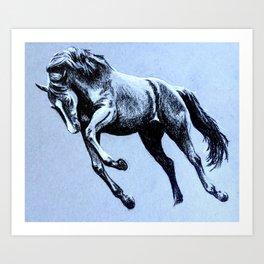 Horse, charcoal on blue paper Art Print