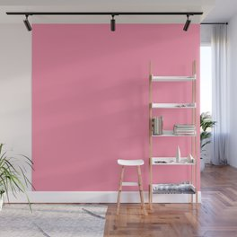 Famous Aggression Reducing Shade Of Pink - Baker Miller Pink - See Description Wall Mural