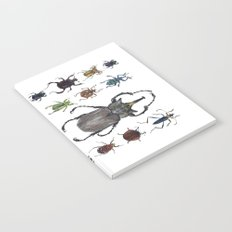 Insect collection (color) Notebook