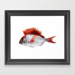 FISHY STARDUST Framed Art Print