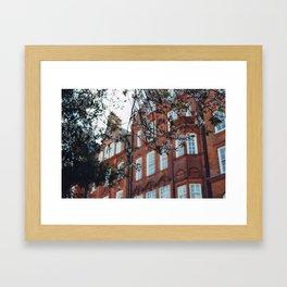 London Blossom Framed Art Print