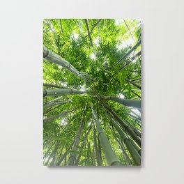 Bamboo Forest Triptych, Center (2 of 3) Metal Print