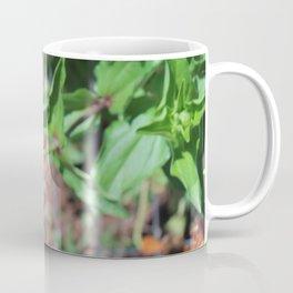 Flower No 5 Coffee Mug