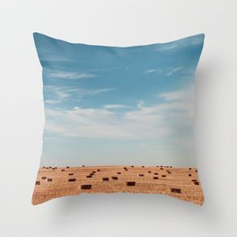 wide open spaces Throw Pillow