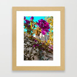 California Flowers Framed Art Print