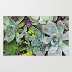 Succulent Carpet Rug