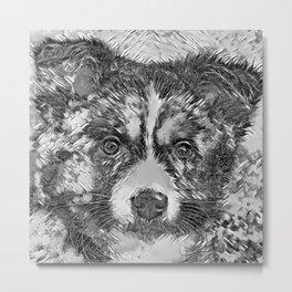 AnimalArtBW_Dog_20170902_by_JAMColorsSpecial Metal Print