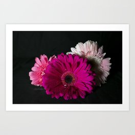 Floral Untitled .03 Art Print