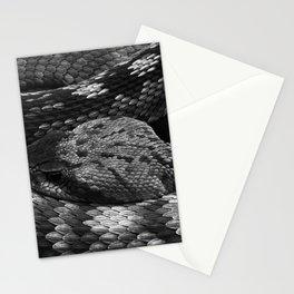 Diamondback Rattlesnake Stationery Cards
