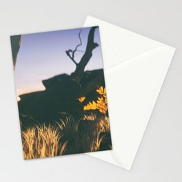 Day 0809 /// It's nice, but there's not really anything going on in this image Stationery Cards