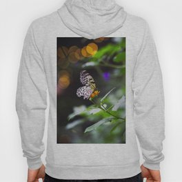 Butterflies + Twinkle Lights 1 Hoody