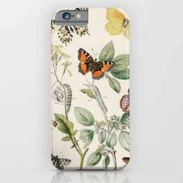 Illustrations from the book of European Butterflies and Moths by William Forsell Kirby (1882) iPhone Case