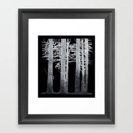 Dark Woods Framed Art Print