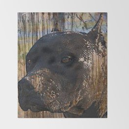Regal Grunge Pitbull Staffordshire Terrier Face Closeup Throw Blanket