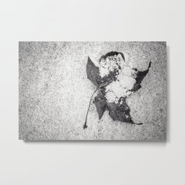 dusting Metal Print