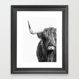 Highland Cow Portrait - Black and White Gerahmter Kunstdruck
