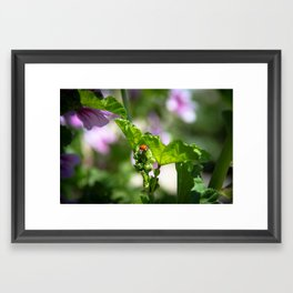 Ladybugs Earn Their Spots Framed Art Print