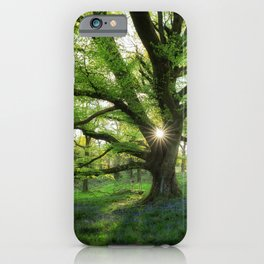 To Swing On The Tree Of Hope iPhone Case