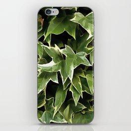 Variegated Ivy iPhone Skin