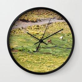 LHAMA I Wall Clock