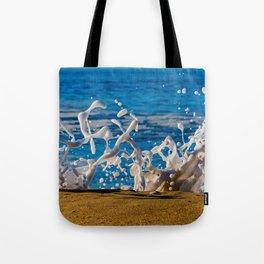Wedge Wash Tote Bag
