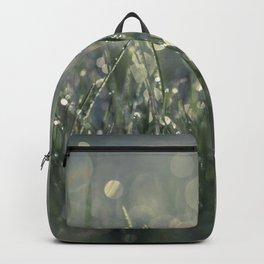 morning lights Backpack