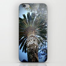 Into The Palm iPhone & iPod Skin