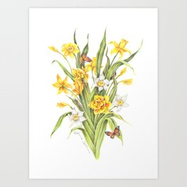 Daffodils and Butterflies Art Print