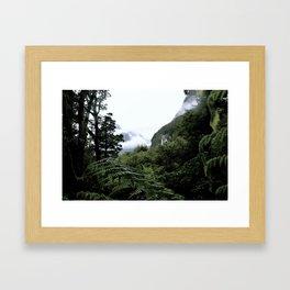 Fiordland Framed Art Print