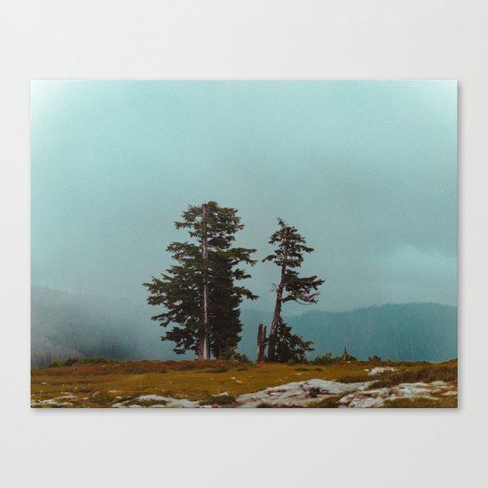Pacific Northwest Wild Canvas Print