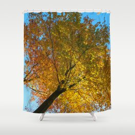 In #autumn, through the #forest Shower Curtain