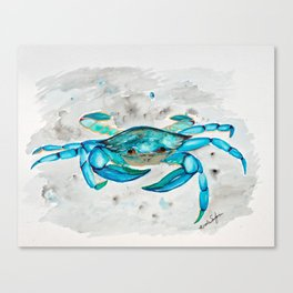 Blue Crab #1 Canvas Print