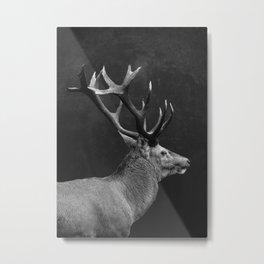 DEER 10 Metal Print