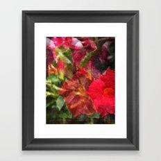 Dipladenia Framed Art Print